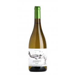 Sotavento Sauvignon Blanc